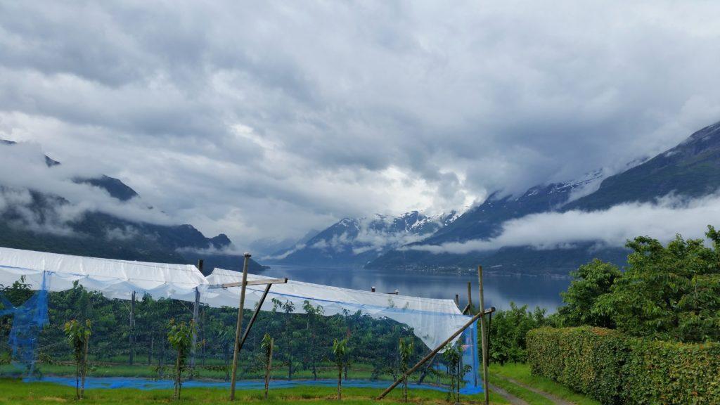 image-15-1024x576 Fiorda, czyli jak wyobrażenia zderzyły się z rzeczywistością Lato 2016 Norwegia